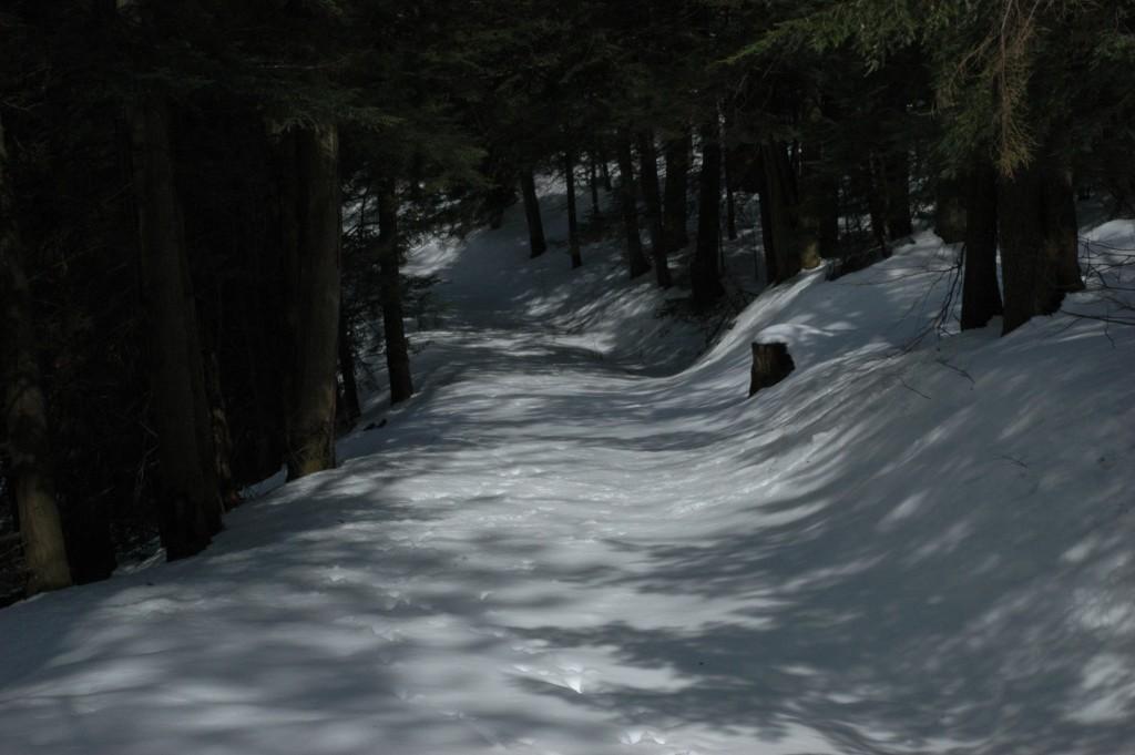 Winter Shadows by Craig Deats