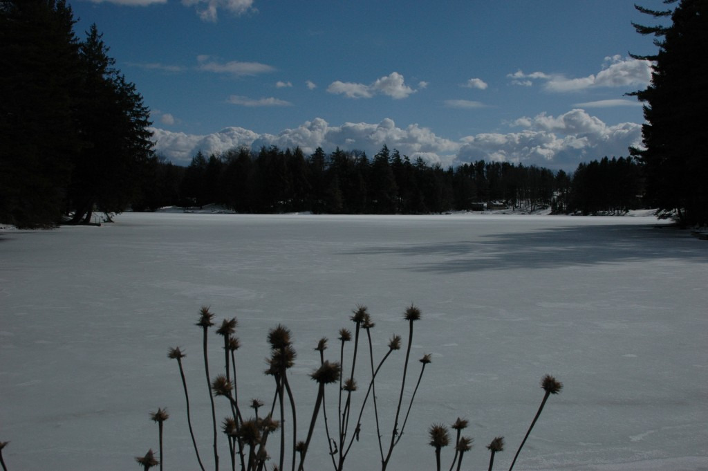 Lake Hiram in Winter by Craig Deats
