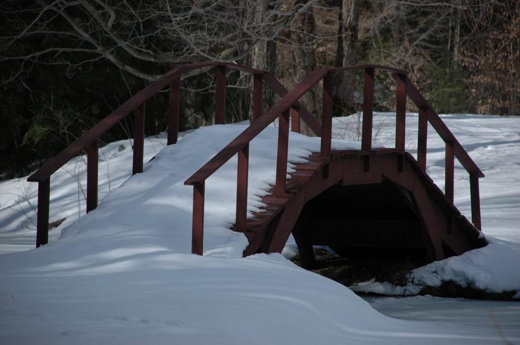 Bridge over Frozen Waters by Craig Deats