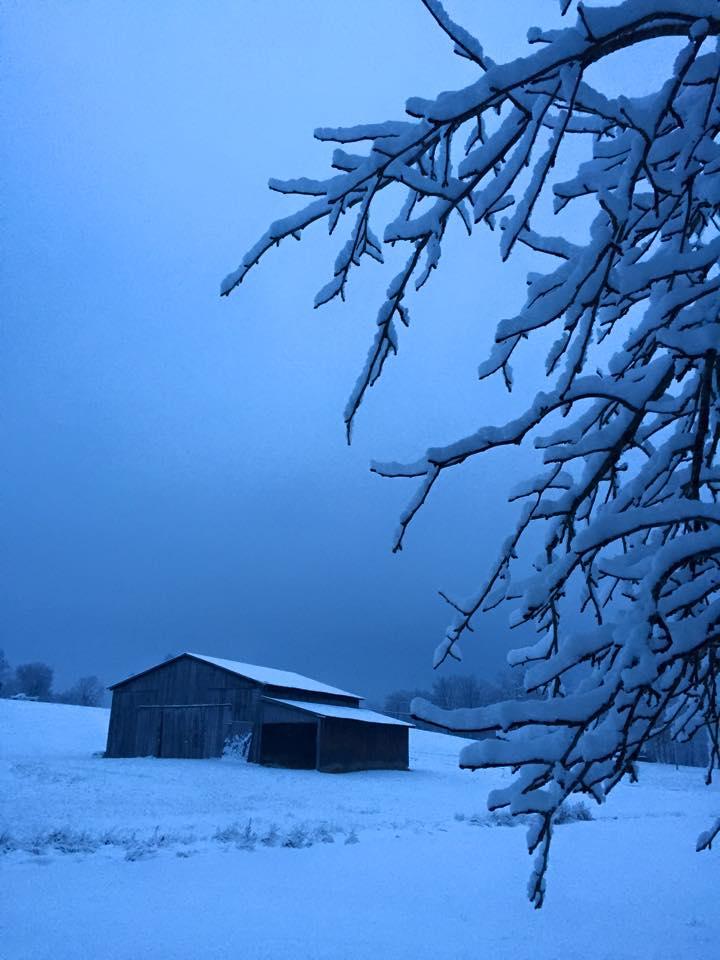 A Barn In Winter by Brandie Trent