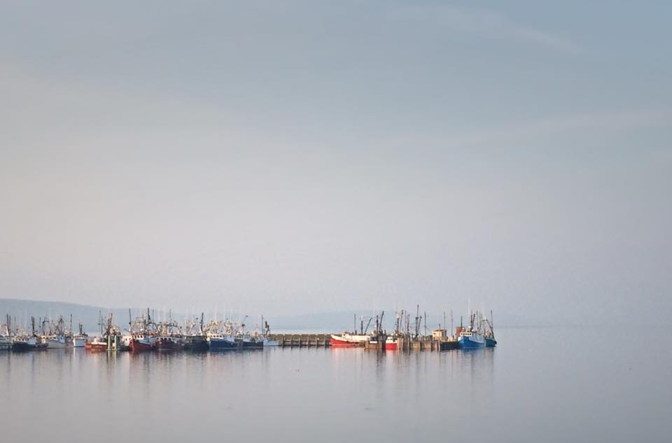 After the Day's Catch -- Digby, NS by Michael Deats