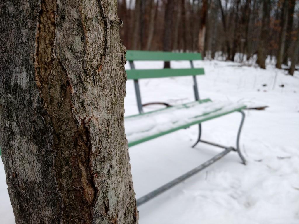 winter2016-6
